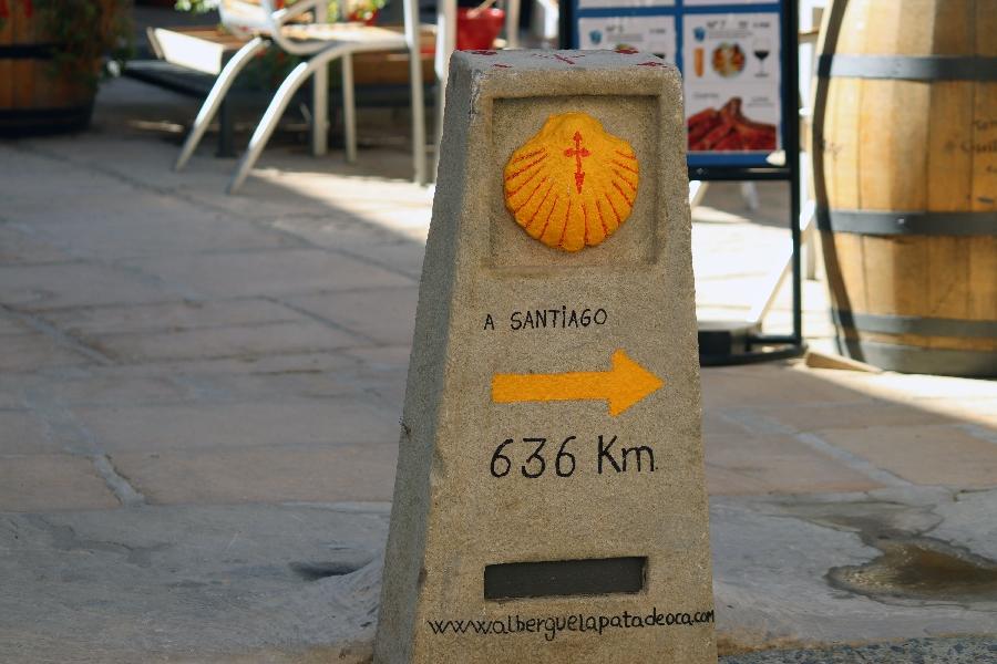 2019 Camino Santiago (20)-1
