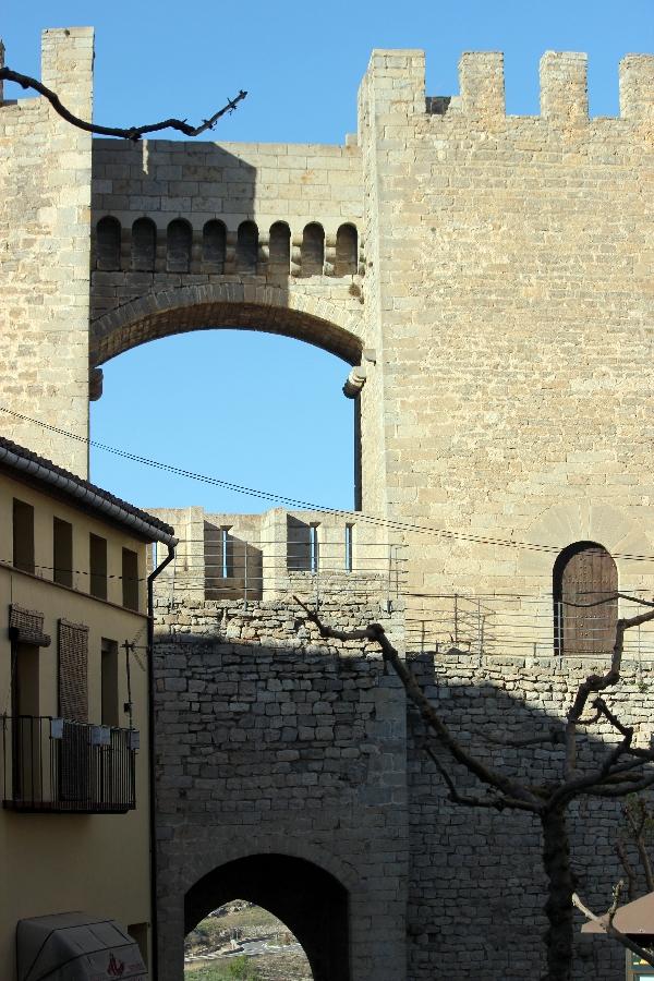 Morella (4)